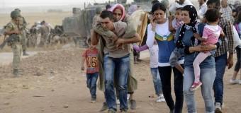 DEMORACY NOW – Refugiados | En este Día de Acción de Gracias los refugiados no son bienvenidos en la mesa estadounidense