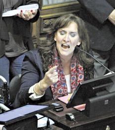 Michetti dijo que hay terminar con los subsidios. Las tarifas aumentarían entre un 300 y un 450 %.