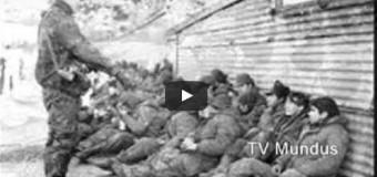 CINE – Malvinas | Nueva proyección de la película Trincheras de Viento.