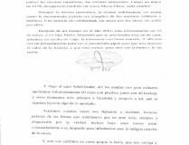 DERECHOS HUMANOS – Régimen | Carta de Hebe de Bonafini al Juez que la persigue por la estafa de los Schoklender.