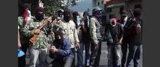 Venezuela_terroristas_3