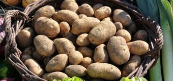ECONOMÍA – Régimen | Los alimentos aumentaron hasta un 69,1 % en el último año.
