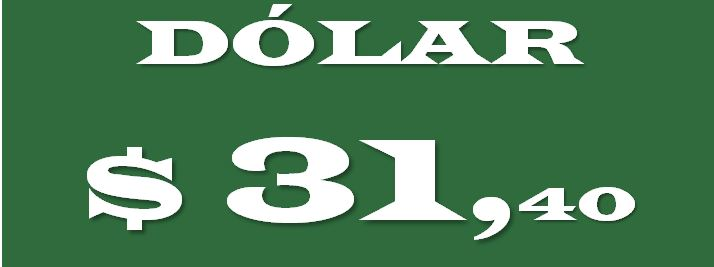 Dola_31.40