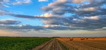 ECONOMÍA – Régimen | En el último año la Agricultura cayó un -31 %.
