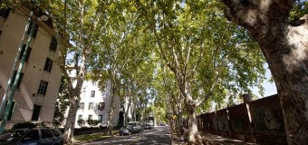 CORRUPCIÓN – Régimen | Rodríguez Larreta le roba hectáreas a la UBA para negocio inmobiliario.