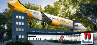 ECONOMÍA – Régimen | Se rompió un avión de FlyBondi antes de despegar en Palomar.