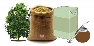 ECONOMÍA – Mate | En enero de 2020 creció 1,2 % el consumo de yerba mate.