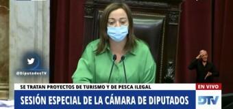 TV en VIVO – Diputados | La Cámara de Diputados sesionó aún ante la oposición de los fascistas que quieren cerrar el Congreso.