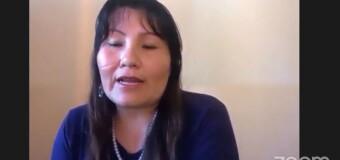 TV en VIVO |  El Parlasur debate por las garantías electorales en Bolivia