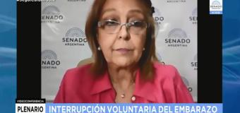 TV en VIVO | Plenario de Comisiones en el Senado debatiendo la IVE