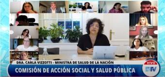 TV Vivo | La Ministra Vizzotti expone ante las Comisiones de la Cámara de Diputados