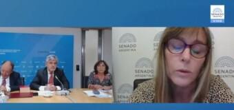 REGIÓN – Argentina / Chile | Discurso de la Senadora Juliana Di Tullio sobre el atropello de Chile contra plataforma argentina.